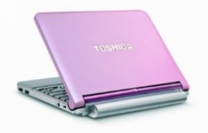 Pink Laptops - Toshiba Mini NB205-N313P